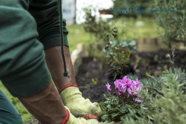 Expert gardeners in manchester