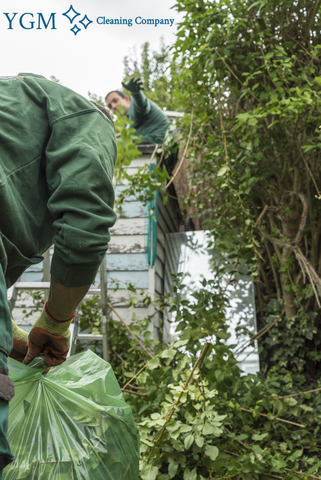 expert gardeners in Brighton-le-Sands